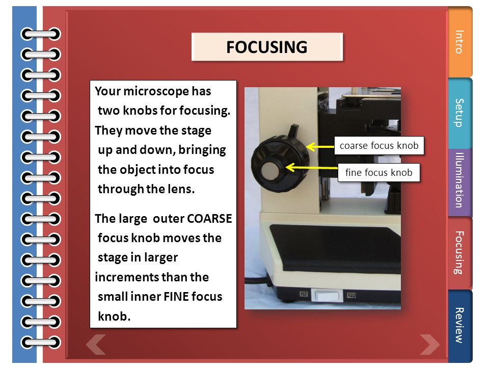 Care Adjust the iris diaphragm. Setup Illumination Focusing Review Open or close the iris diaphragm to adjust the light intensity. The aperture or ope