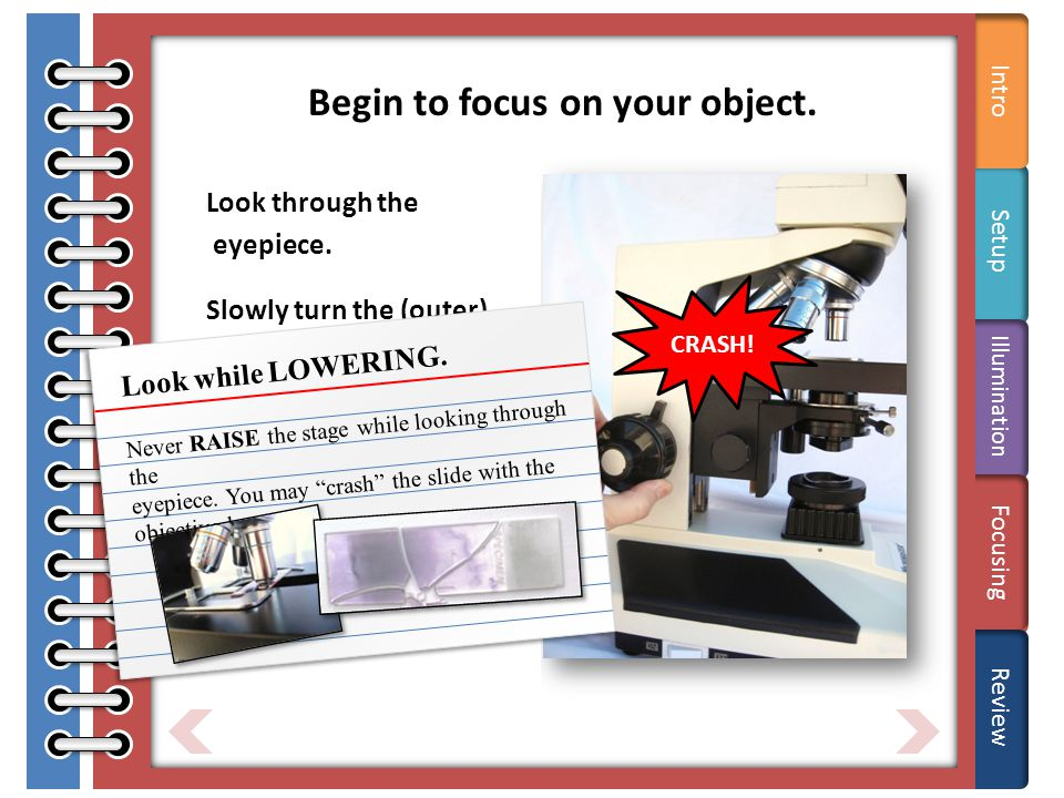 Tips Begin to focus on your object. Look through the eyepiece.
