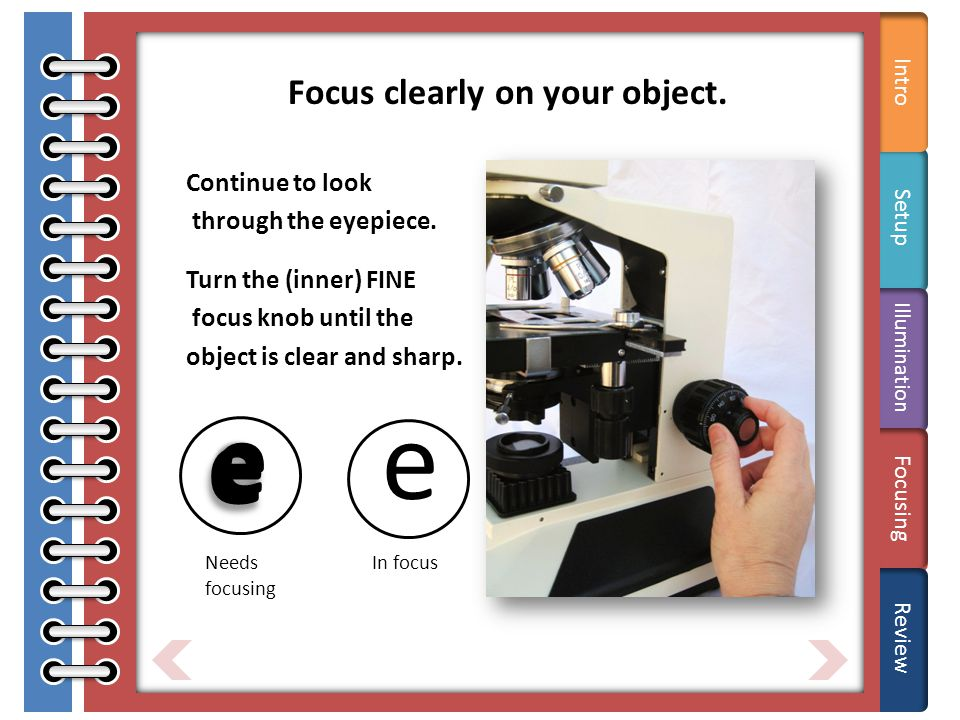 Tips Focus clearly on your object. Continue to look through the eyepiece.