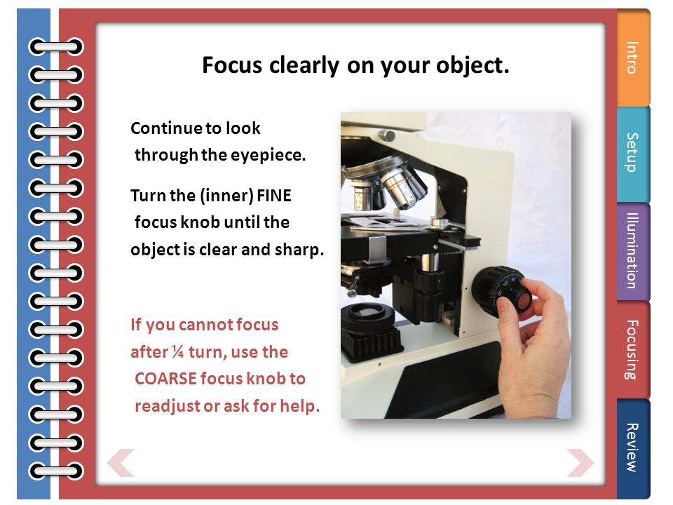 Tips Focus clearly on your object.