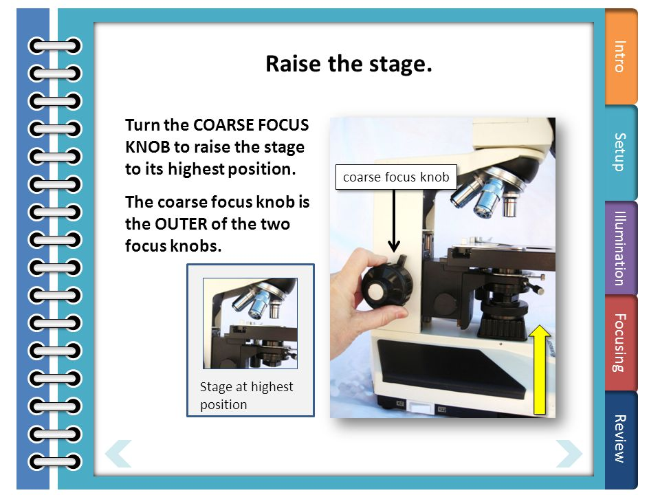 Parts ANIMATE Turn the COARSE FOCUS KNOB to raise the stage to its highest position.