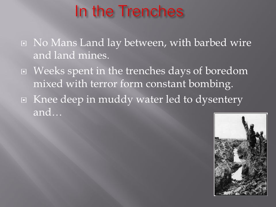  No Mans Land lay between, with barbed wire and land mines.