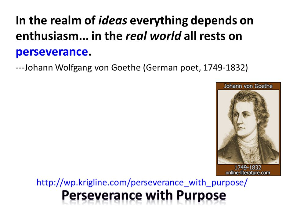 In the realm of ideas everything depends on enthusiasm... in the real world all rests on perseverance. ---Johann Wolfgang von Goethe (German poet, 174