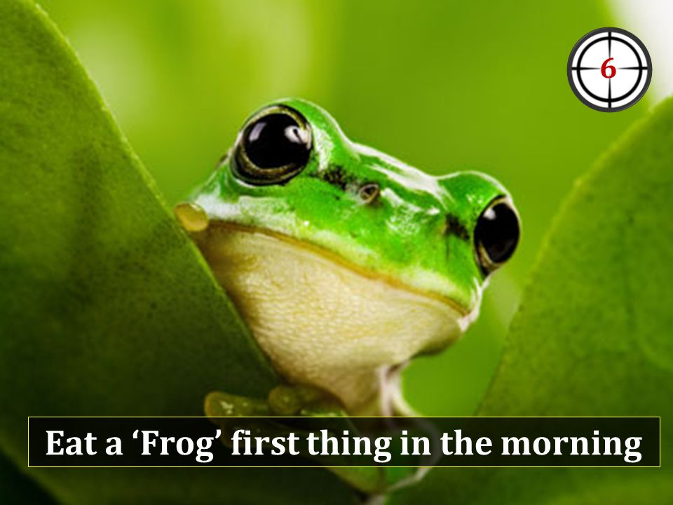 Eat a 'Frog' first thing in the morning 6