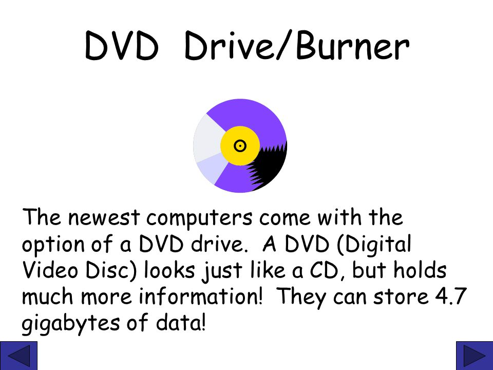 DVD Drive/Burner The newest computers come with the option of a DVD drive. A DVD (Digital Video Disc) looks just like a CD, but holds much more inform