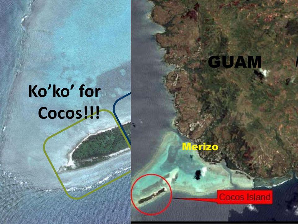Ko'ko' for Cocos!!!