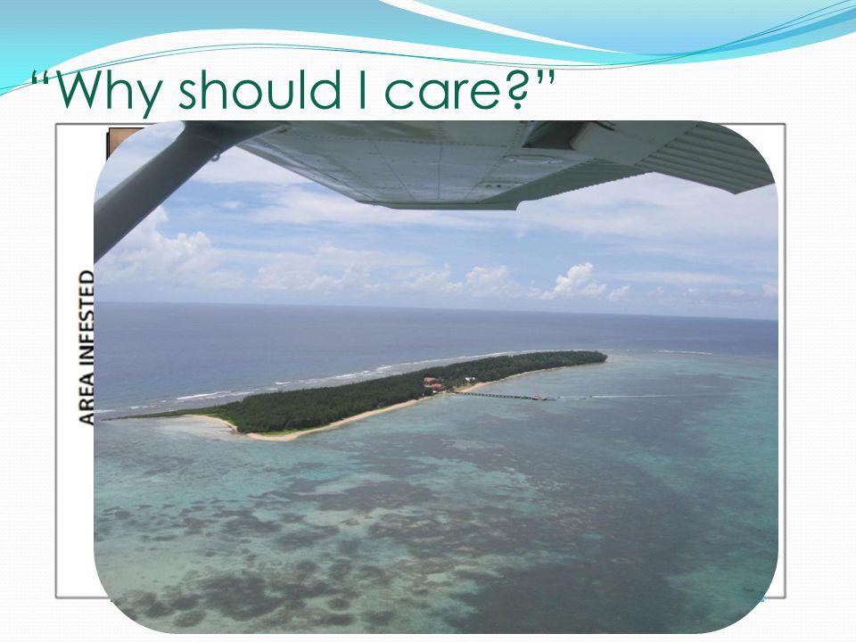 """Why should I care?"" http://blogs.oregonstate.edu/h2onc/categor/invasive-species/"