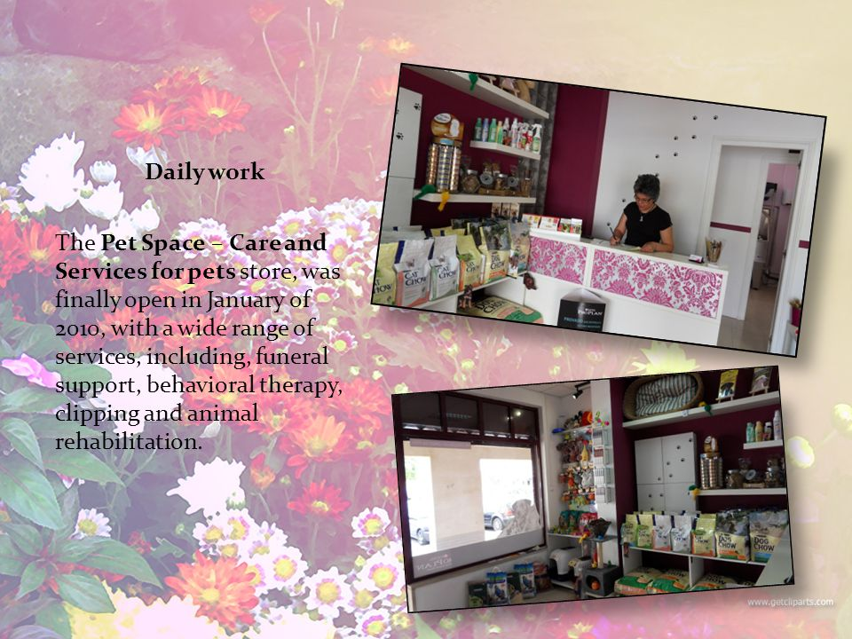 Daily work The Pet Space – Care and Services for pets store, was finally open in January of 2010, with a wide range of services, including, funeral support, behavioral therapy, clipping and animal rehabilitation.