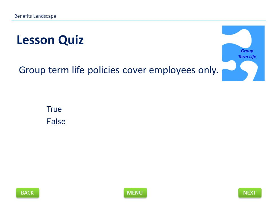 Group term life policies cover employees only.