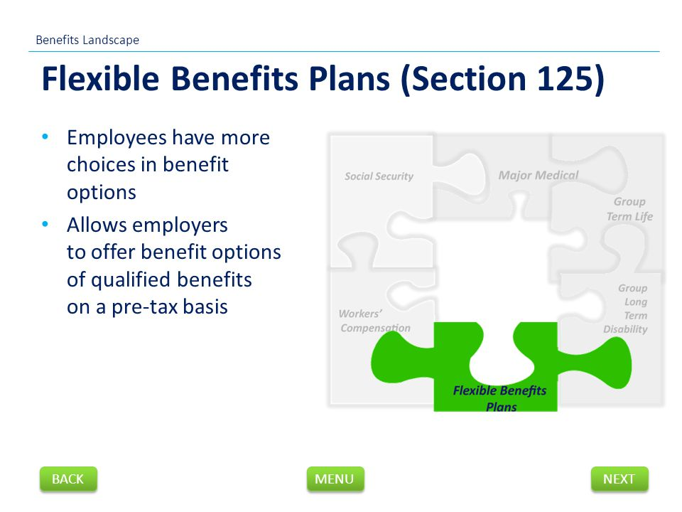 Flexible Benefits Plans (Section 125) Employees have more choices in benefit options Allows employers to offer benefit options of qualified benefits on a pre-tax basis Benefits Landscape NEXT BACK MENU
