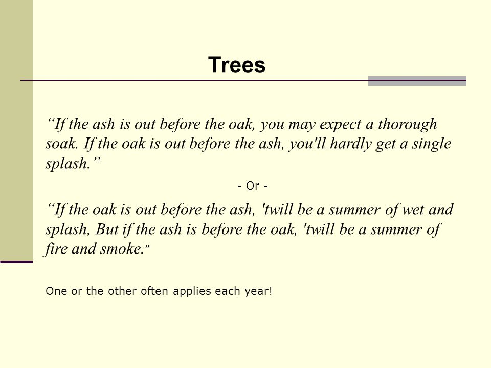 If the ash is out before the oak, you may expect a thorough soak.