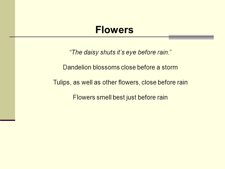 The daisy shuts it's eye before rain. Dandelion blossoms close before a storm Tulips, as well as other flowers, close before rain Flowers smell best just before rain Flowers