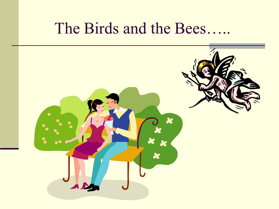 The Birds and the Bees…..