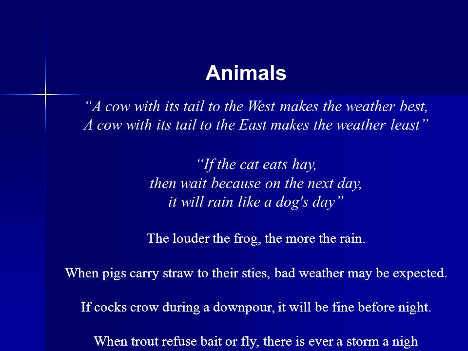 A cow with its tail to the West makes the weather best, A cow with its tail to the East makes the weather least If the cat eats hay, then wait because on the next day, it will rain like a dog s day The louder the frog, the more the rain.