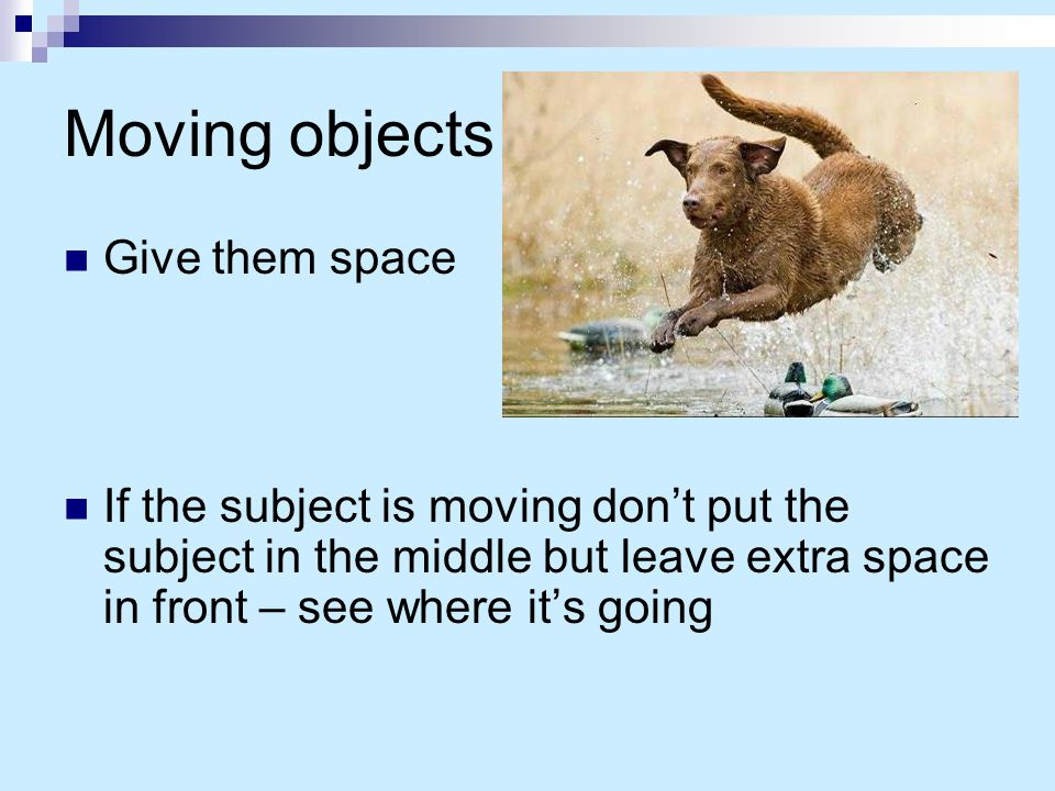 Moving objects Give them space If the subject is moving don't put the subject in the middle but leave extra space in front – see where it's going