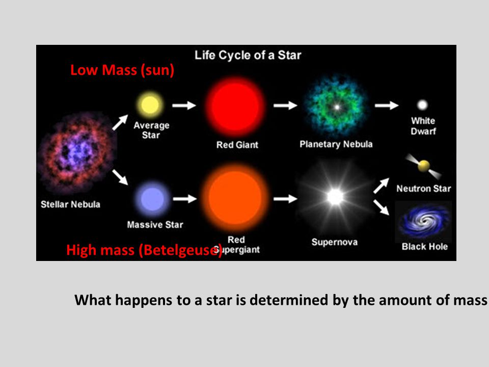 What happens to a star is determined by the amount of mass a star has. Low Mass (sun) High mass (Betelgeuse)