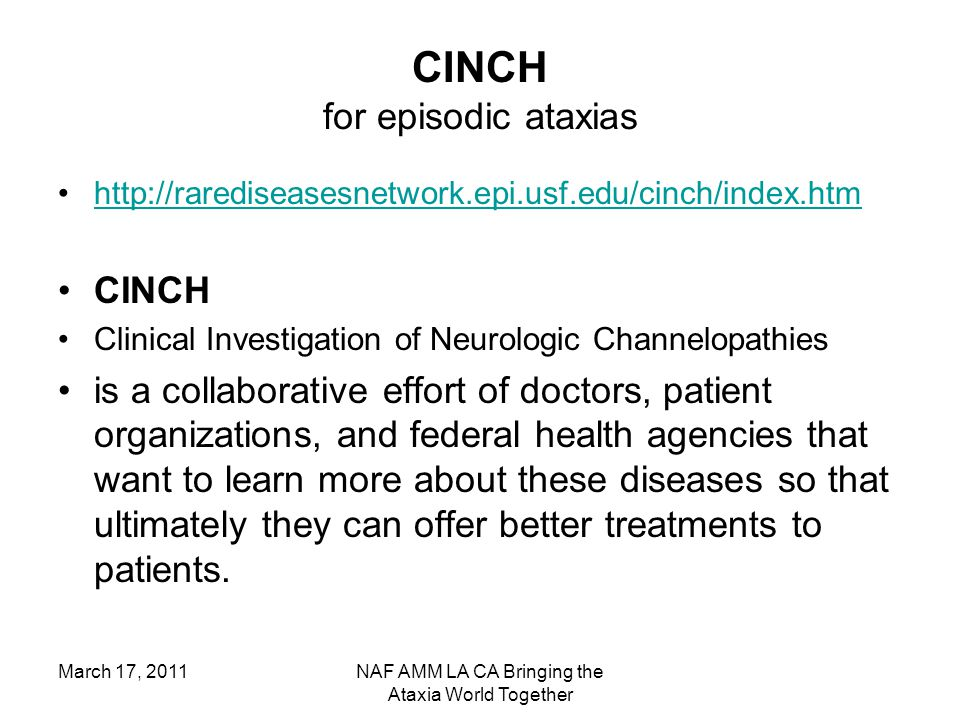 March 17, 2011NAF AMM LA CA Bringing the Ataxia World Together CINCH for episodic ataxias http://rarediseasesnetwork.epi.usf.edu/cinch/index.htm CINCH Clinical Investigation of Neurologic Channelopathies is a collaborative effort of doctors, patient organizations, and federal health agencies that want to learn more about these diseases so that ultimately they can offer better treatments to patients.