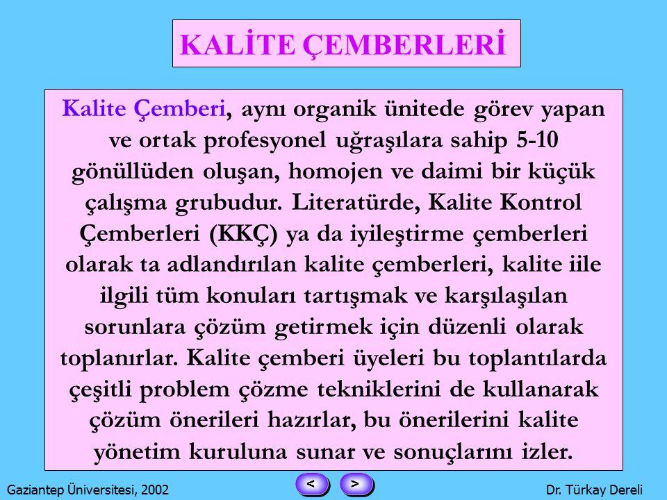 > > < < Gaziantep Üniversitesi, 2002Dr. Türkay Dereli Garip olan ise şu.