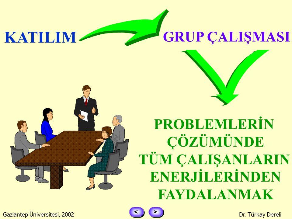 > > < < Gaziantep Üniversitesi, 2002Dr. Türkay Dereli KATILIMCI YÖNETİM