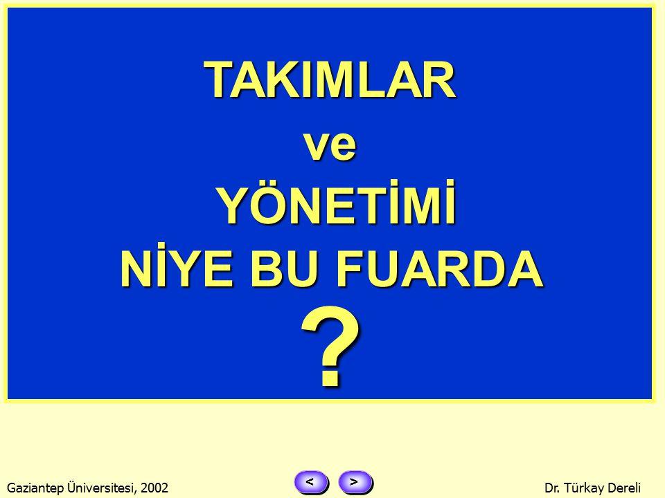 > > < < Gaziantep Üniversitesi, 2002Dr. Türkay Dereli TAKIMA ZAMAN VE YETKİ VERİN.