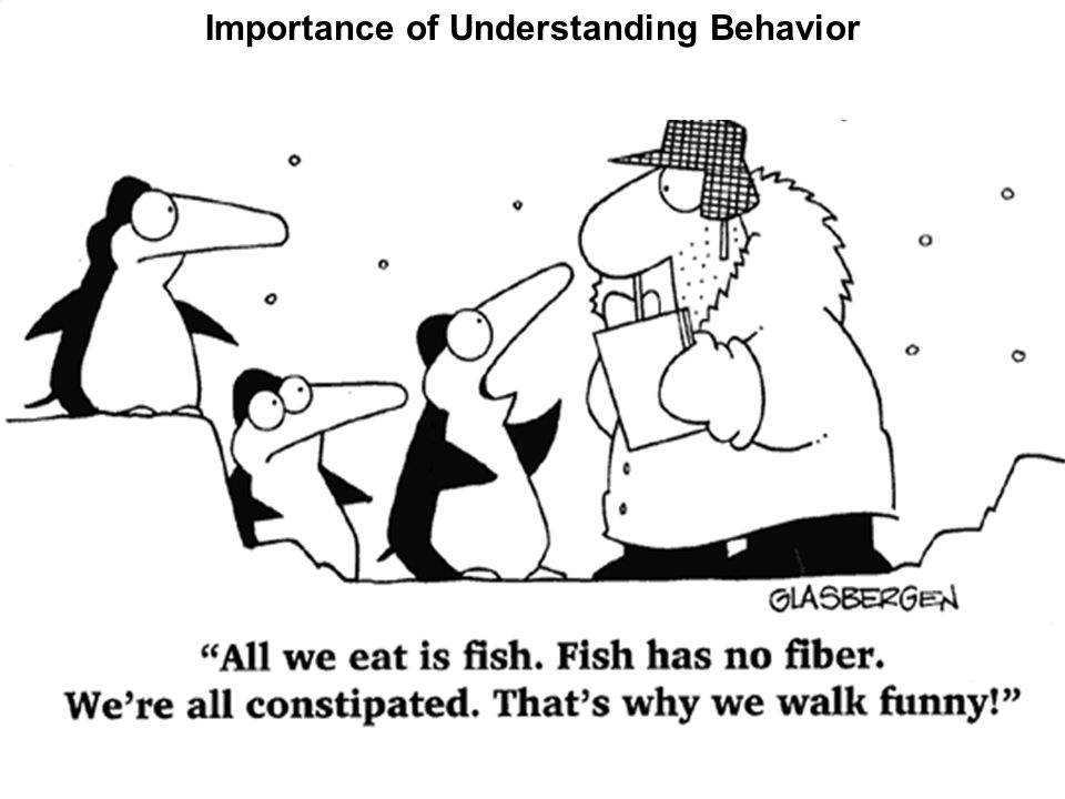 Importance of Understanding Behavior