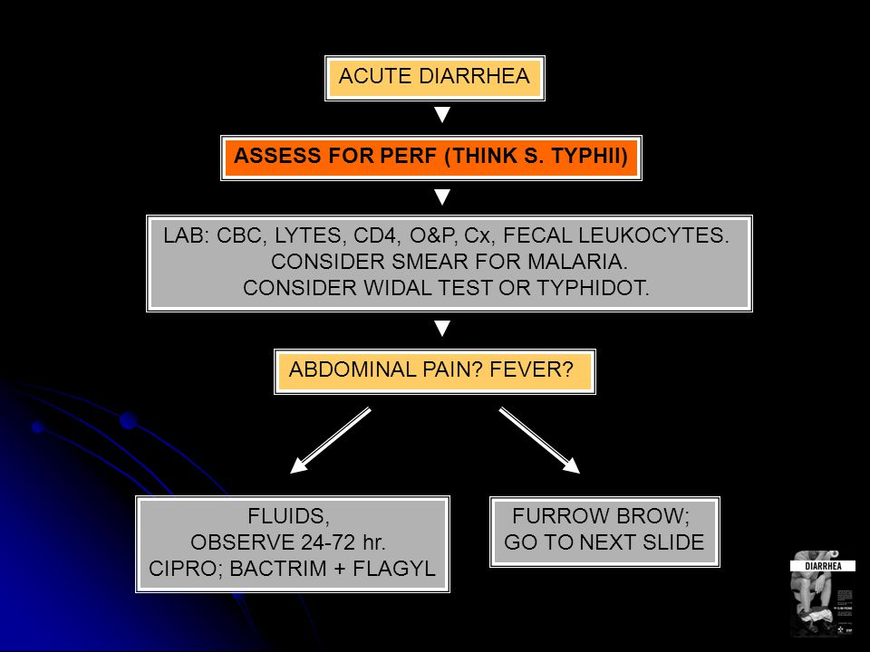 ACUTE DIARRHEA ASSESS FOR PERF (THINK S. TYPHII) LAB: CBC, LYTES, CD4, O&P, Cx, FECAL LEUKOCYTES.