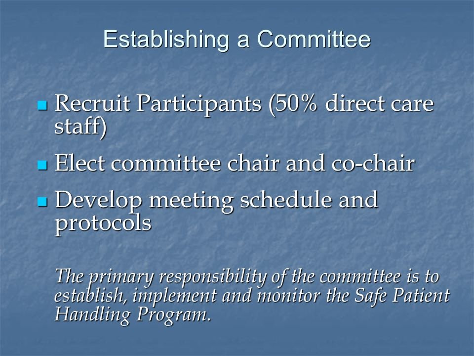 Establishing a Committee Recruit Participants (50% direct care staff) Recruit Participants (50% direct care staff) Elect committee chair and co-chair Elect committee chair and co-chair Develop meeting schedule and protocols Develop meeting schedule and protocols The primary responsibility of the committee is to establish, implement and monitor the Safe Patient Handling Program.