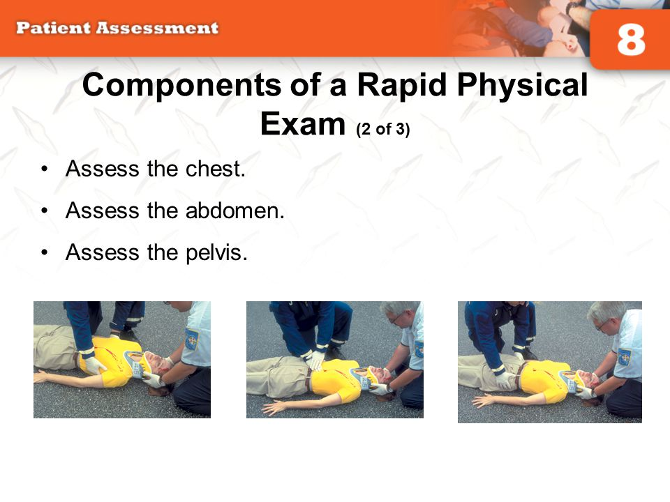 Components of a Rapid Physical Exam (2 of 3) Assess the chest. Assess the abdomen. Assess the pelvis.