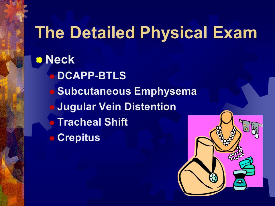 The Detailed Physical Exam  HEENT & Face  Head  Eyes - pupils  Ears  Nose  Throat & Mouth  Face