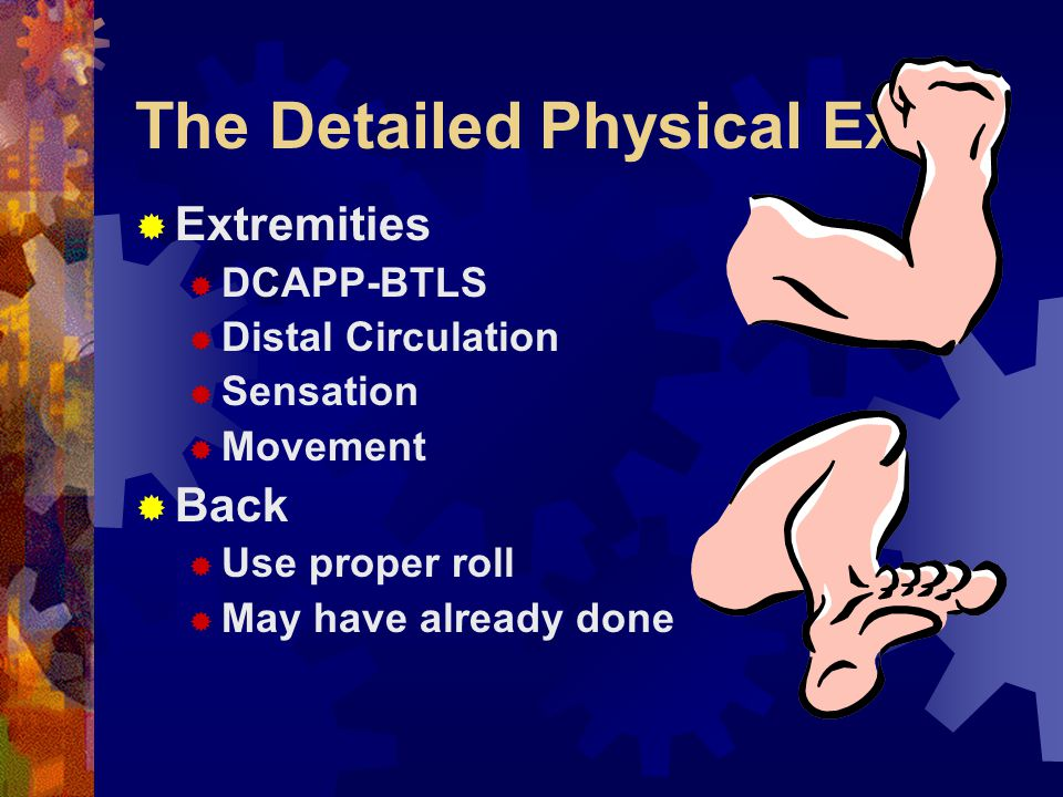 The Detailed Physical Exam  Pelvis  DCAPP-BTLS  Pain  Tenderness  Instability  Crepitus  Priapism