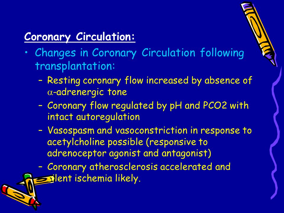 Coronary Circulation: Changes in Coronary Circulation following transplantation: –Resting coronary flow increased by absence of  -adrenergic tone –Coronary flow regulated by pH and PCO2 with intact autoregulation –Vasospasm and vasoconstriction in response to acetylcholine possible (responsive to adrenoceptor agonist and antagonist) –Coronary atherosclerosis accelerated and silent ischemia likely.