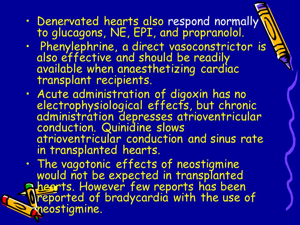 Denervated hearts also respond normally to glucagons, NE, EPI, and propranolol.