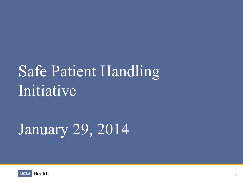 1 Safe Patient Handling Initiative January 29, 2014