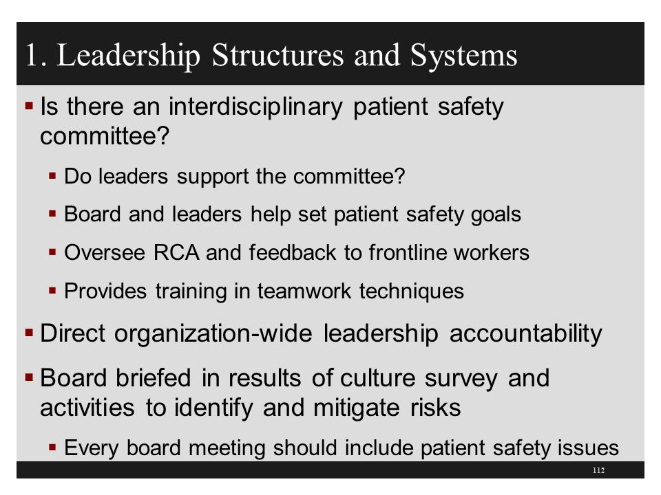 1. Leadership Structures and Systems  Is there an interdisciplinary patient safety committee?  Do leaders support the committee?  Board and leaders