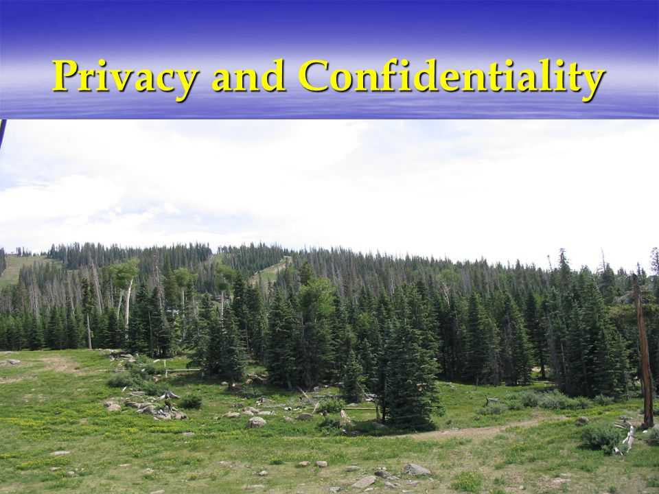 Strategies Messages or letters for patients Leave message in sealed envelope marked confidential Mark letters confidential