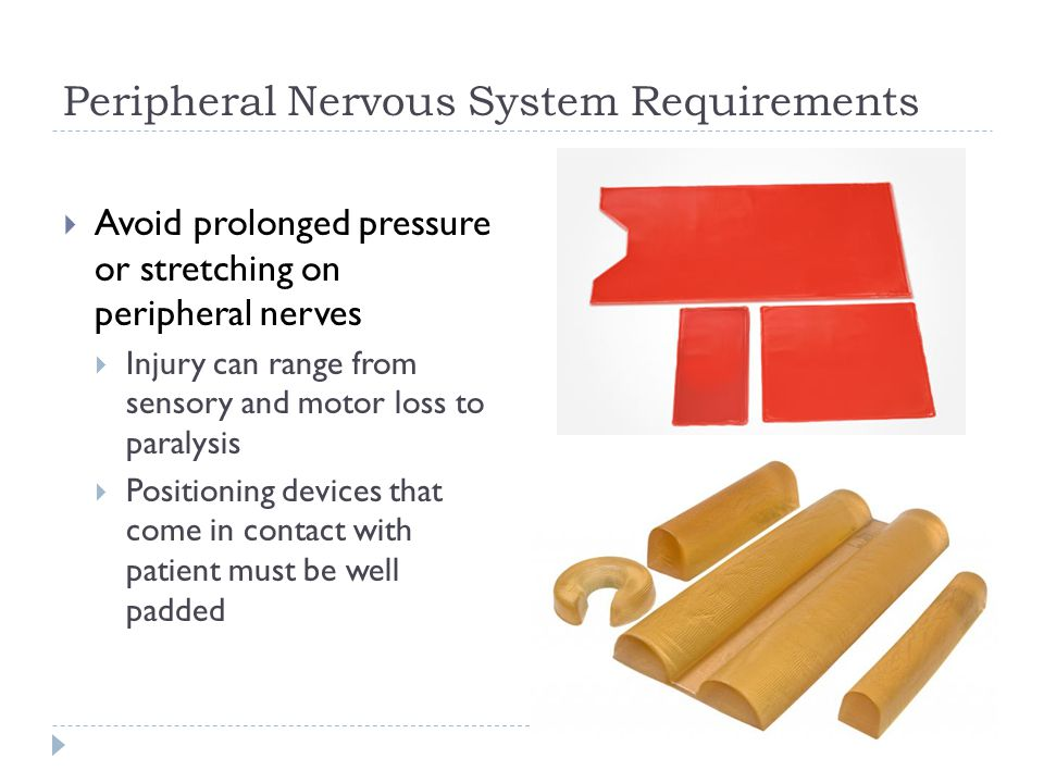 Peripheral Nervous System Requirements  Avoid prolonged pressure or stretching on peripheral nerves  Injury can range from sensory and motor loss to