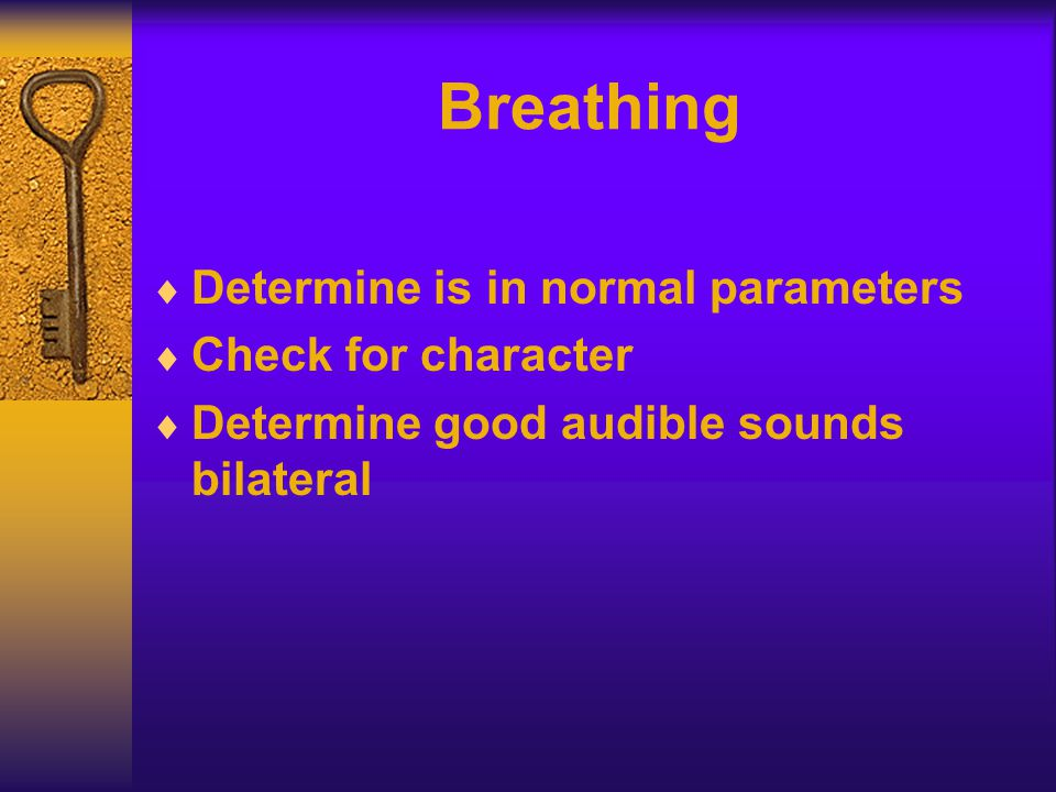Breathing  Determine is in normal parameters  Check for character  Determine good audible sounds bilateral