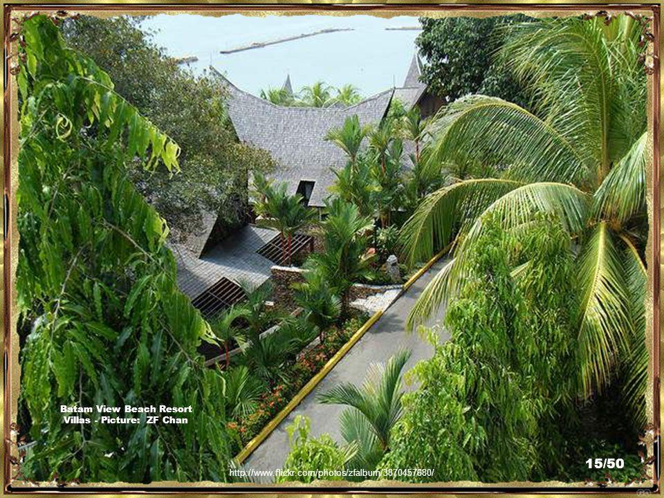 http://www.flickr.com/photos/magicdow/4033254405/ Villas by The Sea, Batam View Beach Resort - Picture: Bernard Sim 14/50