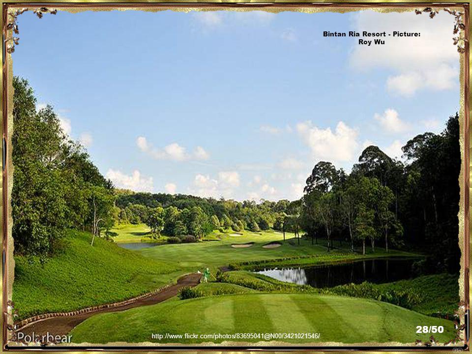 http://www.flickr.com/photos/83695041@N00/3420212881/ Bintan Ria Resort - Picture: Roy Wu 27/50