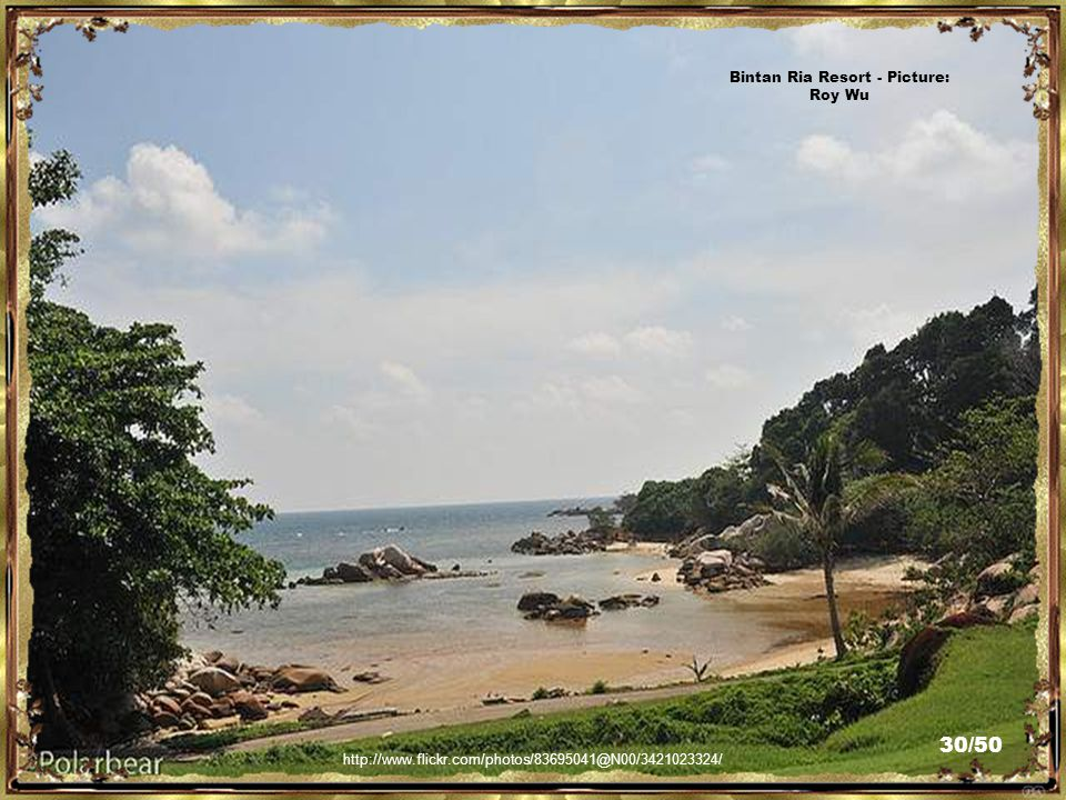 http://www.flickr.com/photos/83695041@N00/3420990142/ Bintan Ria Resort - Picture: Roy Wu 29/50