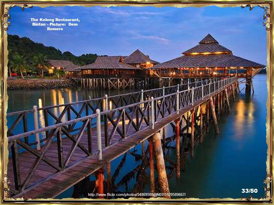 http://www.flickr.com/photos/83695041@N00/3420213157/ Bintan Ria Resort - Picture: Roy Wu 32/50