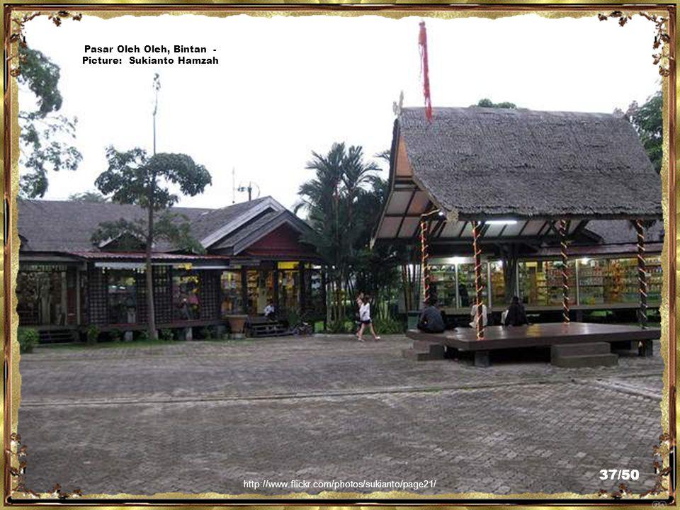 http://www.flickr.com/photos/sukianto/5190765163/ Kampoeng Lagoi(shopping & dining spot), Bintan - Picture: Sukianto Hamzah 36/50