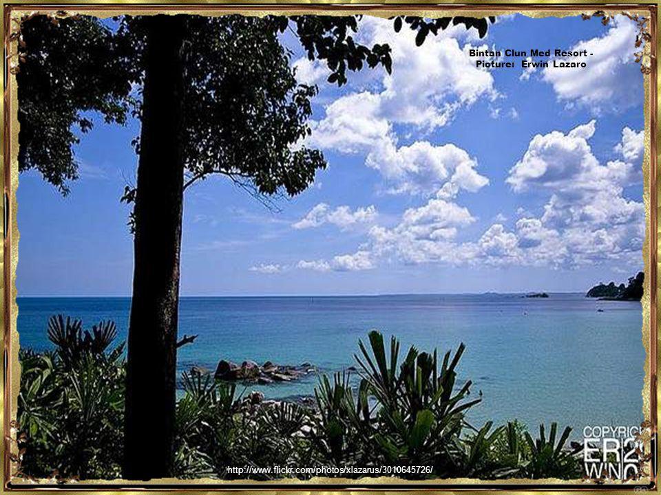 http://www.flickr.com/photos/50339210@N05/4839123025/ Bintan Club Med Resort - Picture: Ganesh Babu 39/50