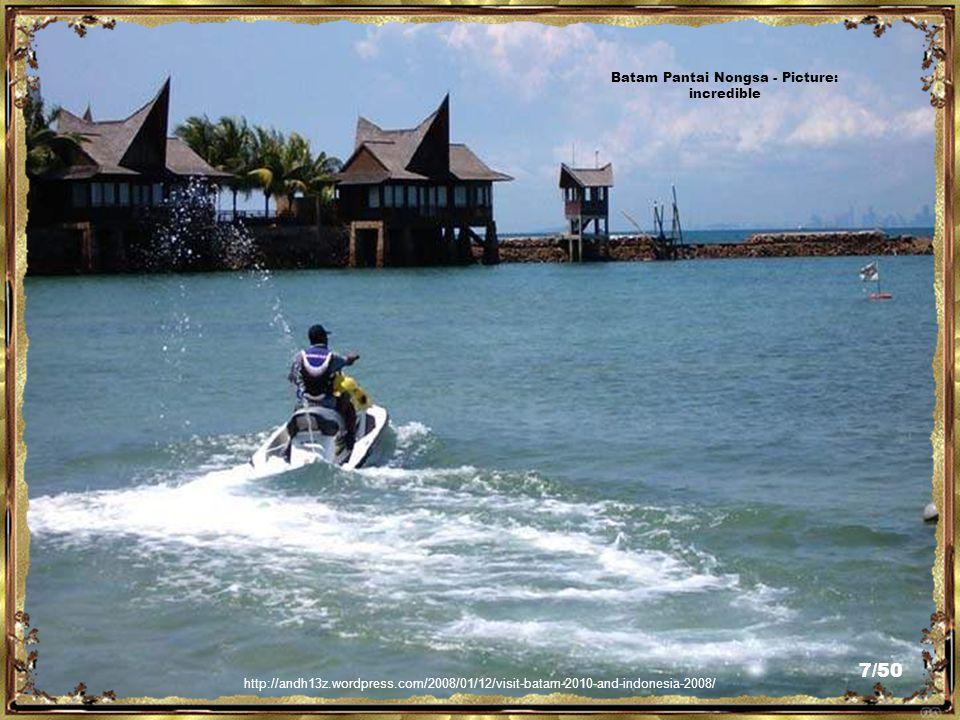 http://www.flickr.com/photos/arumaga/3054878713/ Batam Nongsa Lake - Picture: Pietra Arumaga 6/50