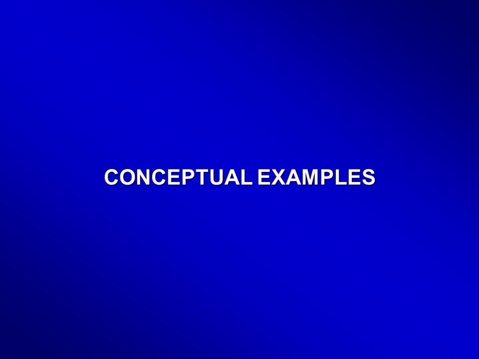 CONCEPTUAL EXAMPLES