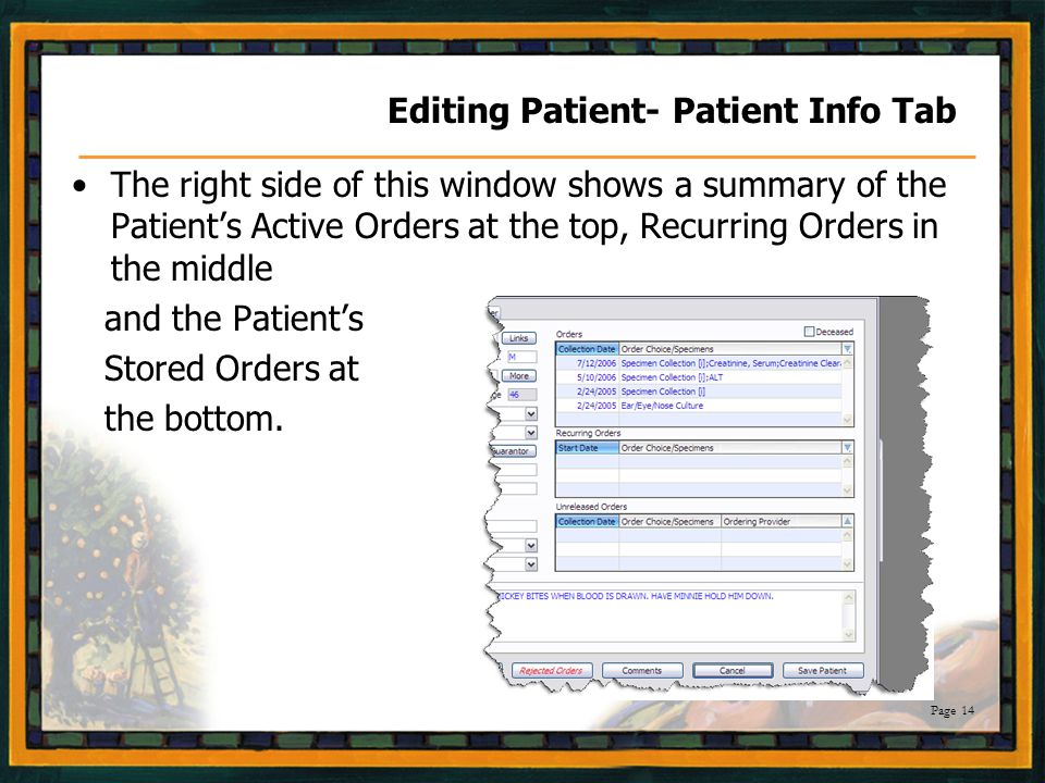Page 14 Editing Patient- Patient Info Tab The right side of this window shows a summary of the Patient's Active Orders at the top, Recurring Orders in the middle and the Patient's Stored Orders at the bottom.