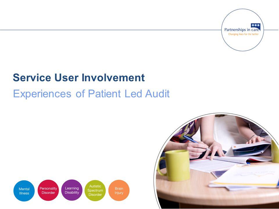 Service User Involvement Experiences of Patient Led Audit