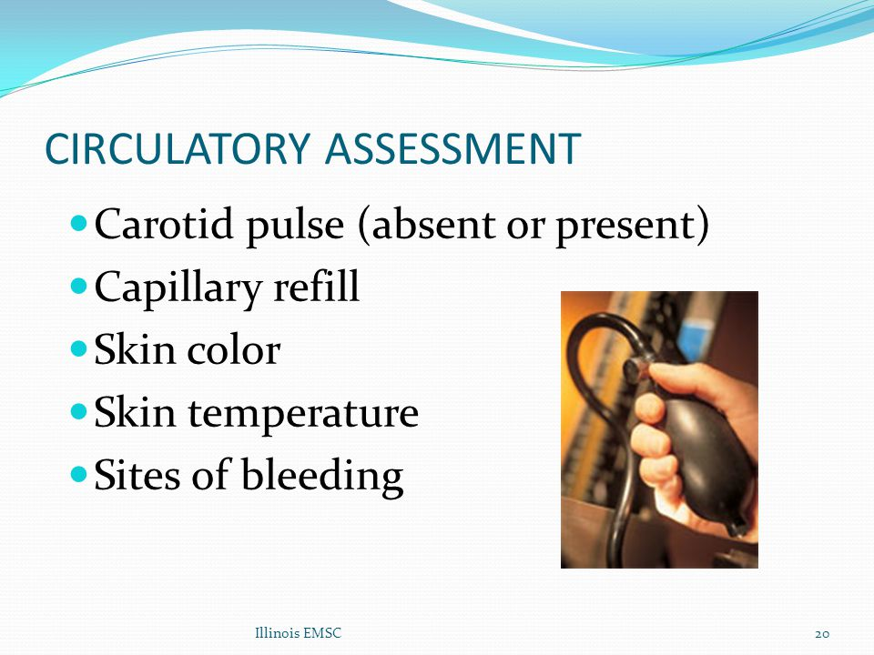 Illinois EMSC20 CIRCULATORY ASSESSMENT Carotid pulse (absent or present) Capillary refill Skin color Skin temperature Sites of bleeding