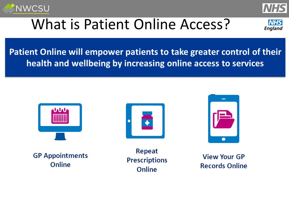 Patient Viewing their Summary - Allergies: Vision Online Screens