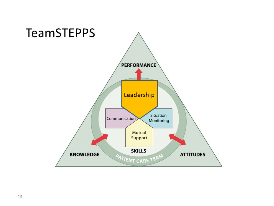 13 TeamSTEPPS Leadership